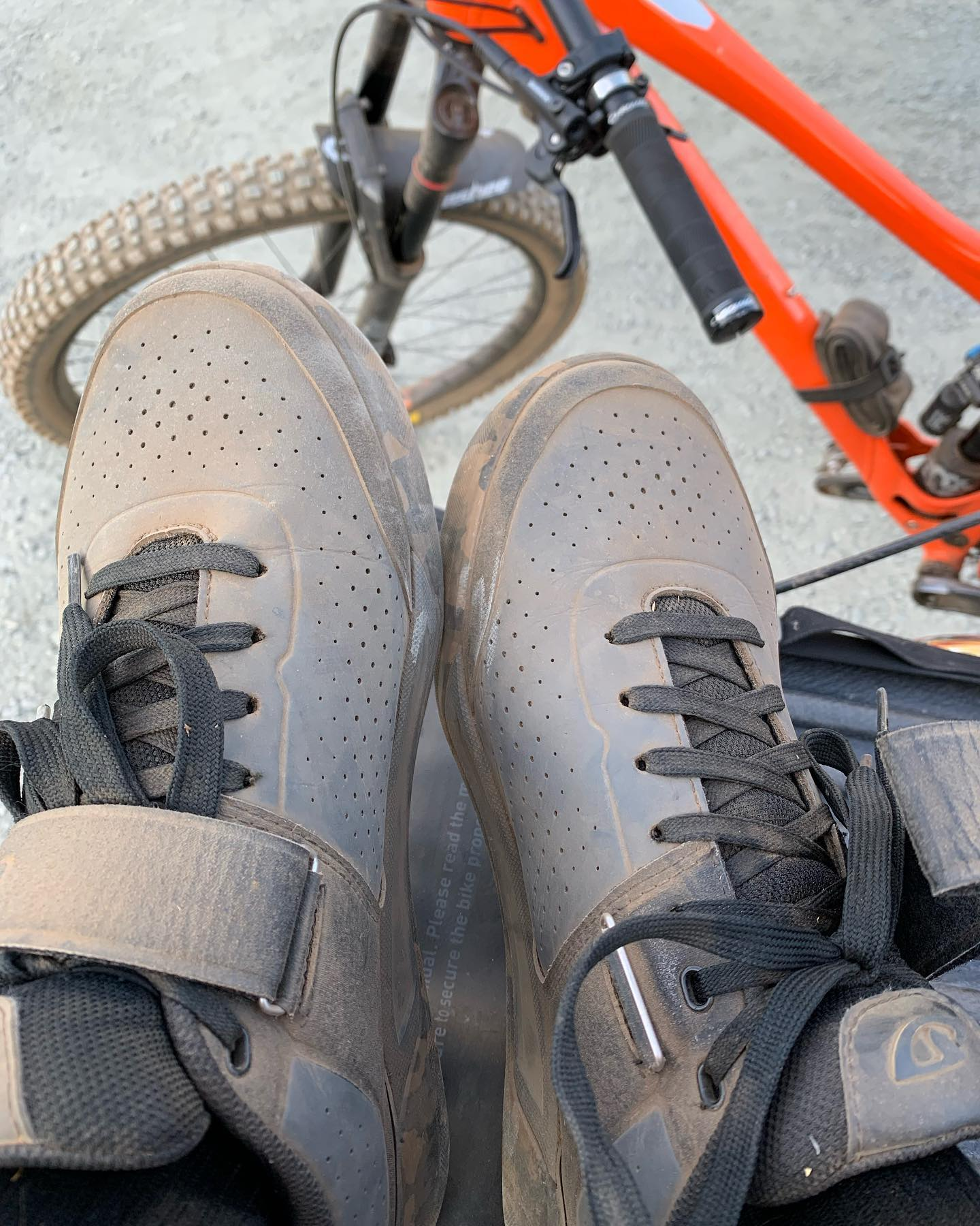 🤔Might need to change my moniker to dusty laces if this keeps up. #mtbvi #yyj #mountainbiking #bikesarefun #dustytrails